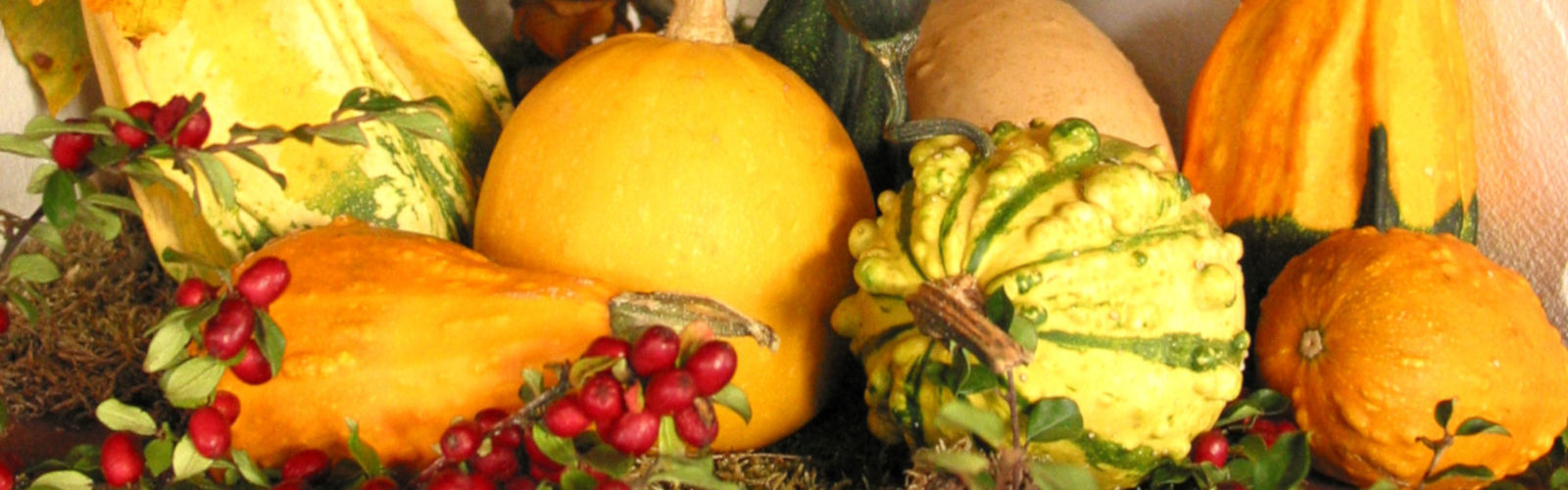 145--topimg-pumpkin